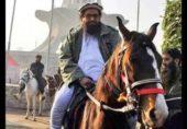 Hafiz-Saeed-Horse