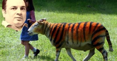 sheep-tiger-wm