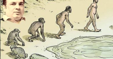 evolution-5bw