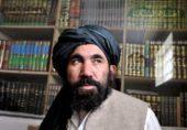 گرفتاری کے وقت ملا عبدالسلام ضعیف کو سفارتی استثنا حاصل نہیں تھا