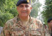 ہم سب کا پاکستان – ایک تاریخی قدم