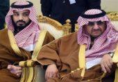سعودی بادشاہت خطرے میں ، 21 شہزادوں نے ملک سلمان کو خبردار کردیا