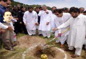 عمران خان کے ایک ارب درخت سچ نکلے