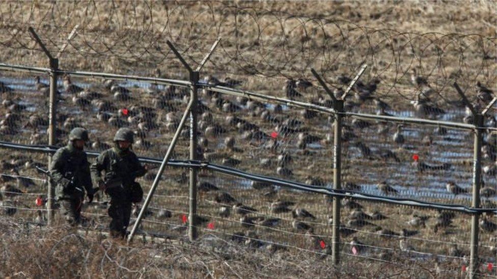 گذشتہ تین سالوں میں یہ صرف چوتھا موقع ہے کہ کوئی شمالی کوریائی فوجی اس زون سے فرار ہوا ہو۔