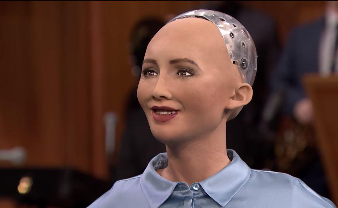 میرا روبوٹ میری مرضی