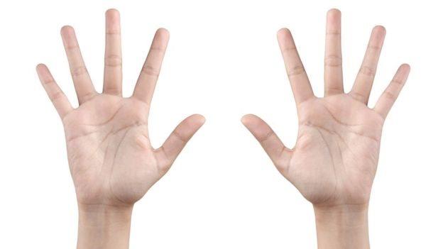 ہاتھوں کی انگلیاں