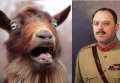 طاقتور جنرل ایوب خان ڈھیٹ بکری سے ہار گئے