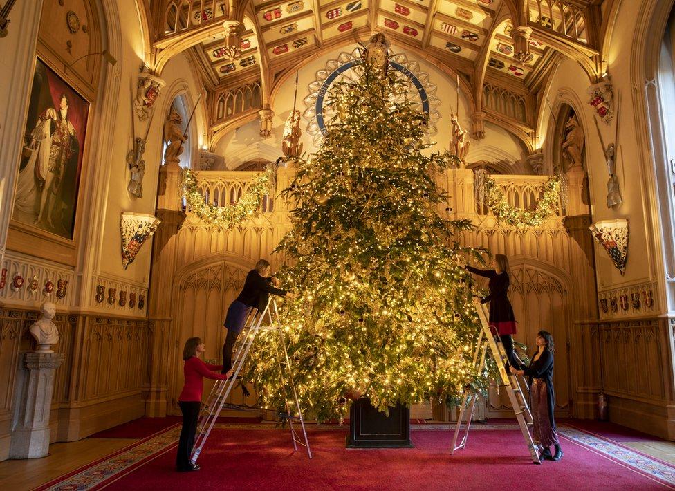 برطانیہ کے ونڈزر محل میں 20 فٹ اونچی کرسمس ٹری لگائی جا رہی ہے۔