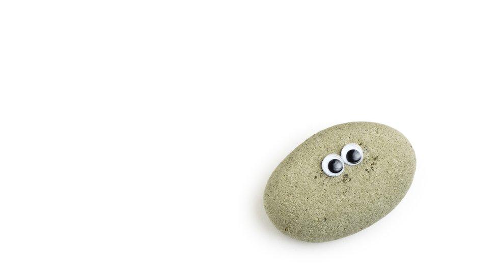 پالتو پتھروں کا ایک نمونہ