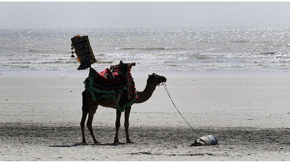 کراچی ساحل سمندر