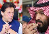 ریاض ملک کا سرکاری وکیل اور عمران خان کی سعودی دربار میں حاضری