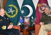 دہشت گردی ختم کرنے کے بعد پاکستان اب آسٹریلیا میں آگ بجھائے گا