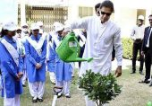 کرپشن فری پاکستان میں بدعنوانی کی نئی کونپلیں