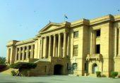 نیب نے شاہد خاقان کی زبان بند کرانے کے لئے ریفرنس بنایا، سندھ ہائیکورٹ