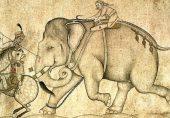 کاون، 'سفید ہاتھی' اور برصغیر کی تاریخ میں دیے جانے والے چند دلچسپ سفارتی تحائف کی کہانی