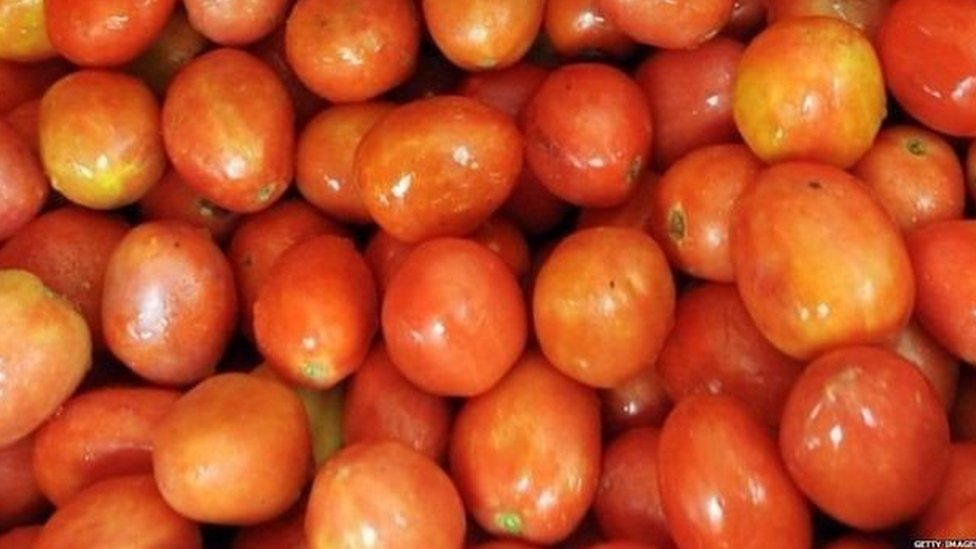 ٹماٹر