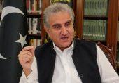 ایف اے ٹی ایف کو پاکستان کے لیے گنجائش نکالنی چاہیے: شاہ محمود قریشی