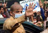 شہباز شریف: پاکستان مسلم لیگ نواز کے سربراہ کے جیل میں شب و روز اور اُن کے زیر مطالعہ چار کتابیں