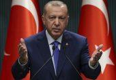 طیب اردوغان: خطے میں دھاک بٹھانے کی اردوغان کی کوششیں اور ترک کرنسی کی قدر میں کمی