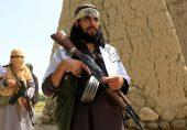 افغان امن عمل: افغانستان میں 'القاعدہ طالبان کی صفوں میں شامل'، اقوام متحدہ کے اہلکار کی تنبیہ