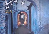 ناسٹیلجیا: سلمان باسط کا آتش رفتہ کا سراغ