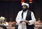 حافظ حمد اللہ کی شہریت کی منسوخی:  'معاملے کو ہمیشہ کے لیے طے کریں گے'