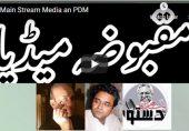 تحریک جمہوریت، حکومت اور مقبوضہ میڈیا