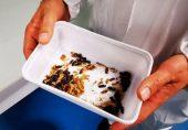 یورپ میں کیڑے پہلی مرتبہ انسانی خوراک کا حصہ بنیں گے