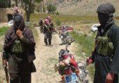 کیا داعش پاکستان میں دوبارہ فعال ہو رہی ہے؟