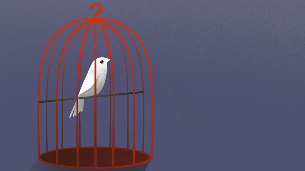 Illustration of bird in a cage.