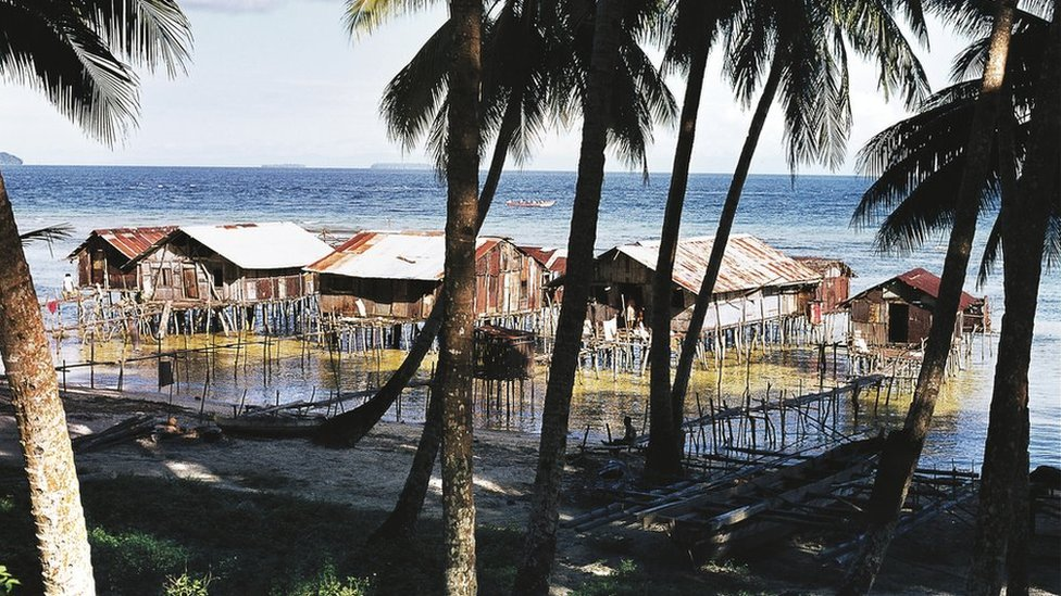 Palm trees and pile dwellings, Biak island, Papua New Guinea.