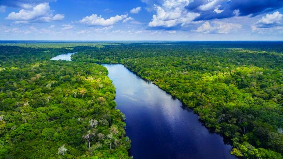 Aerial view of Amazon river in Brazil