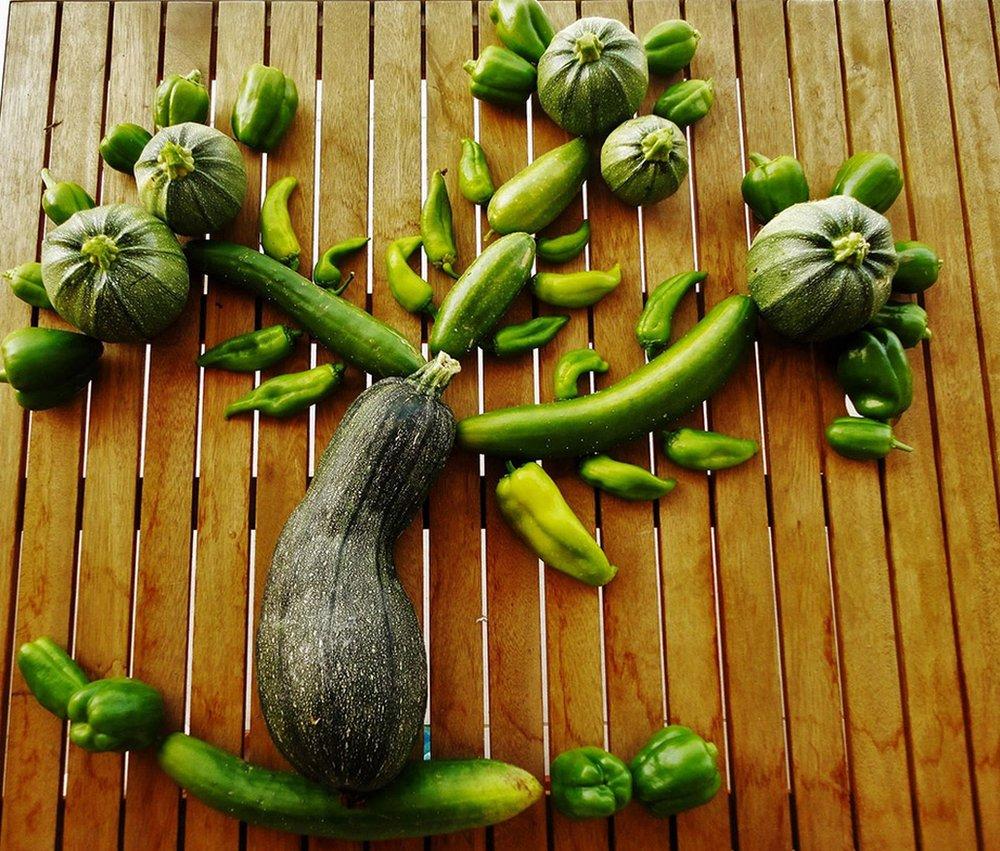 Vegetable tree