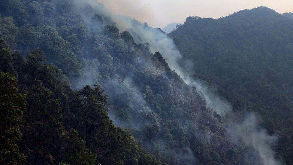 اتراکھنڈ، جنگل کی آگ