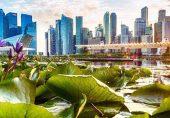 سنگاپور: وہ ملک جسے صاف ستھرا رہنے کا جنون کی حد تک شوق ہے