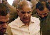 شہباز شریف: مسلم لیگ (ن) کے صدر کا نام ای سی ایل میں ڈال دیا گیا، ملک سے باہر نہیں جا سکیں گے