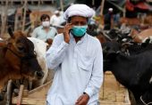 ترانوے فی صد پاکستانیوں کے پاس موبائل فونز، 16 فی صد گھرانے غذائی عدم تحفظ کا شکار