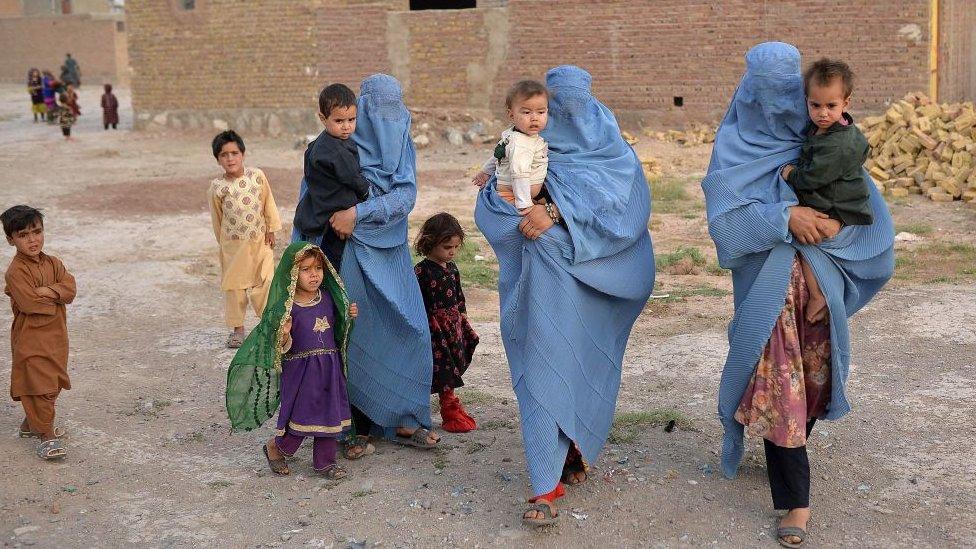 کیا افغانستان میں کاشتہ فصل کاٹنے کا وقت آ گیا؟