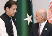 افغانستان کا پاکستانی فضائیہ پر طالبان کی سپورٹ کا الزام: 'پاکستان نے صرف اپنی حدود میں اپنے عوام اور فوجیوں کی حفاظت کے لیے ضروری اقدامات کیے'