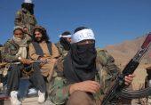 کیا افغان طالبان کی پیش قدمی پاکستان میں ٹی ٹی پی کی مضبوطی کا باعث بنے گی؟