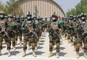 کیا افغانستان کی فوج طالبان کا مقابلہ کرنے کی صلاحیت رکھتی ہے؟