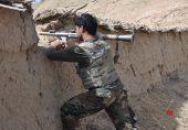 افغان سیکیورٹی فورسز نے ہرات شہر، ضلع کاروغ میں طالبان کو پسپا کر دیا
