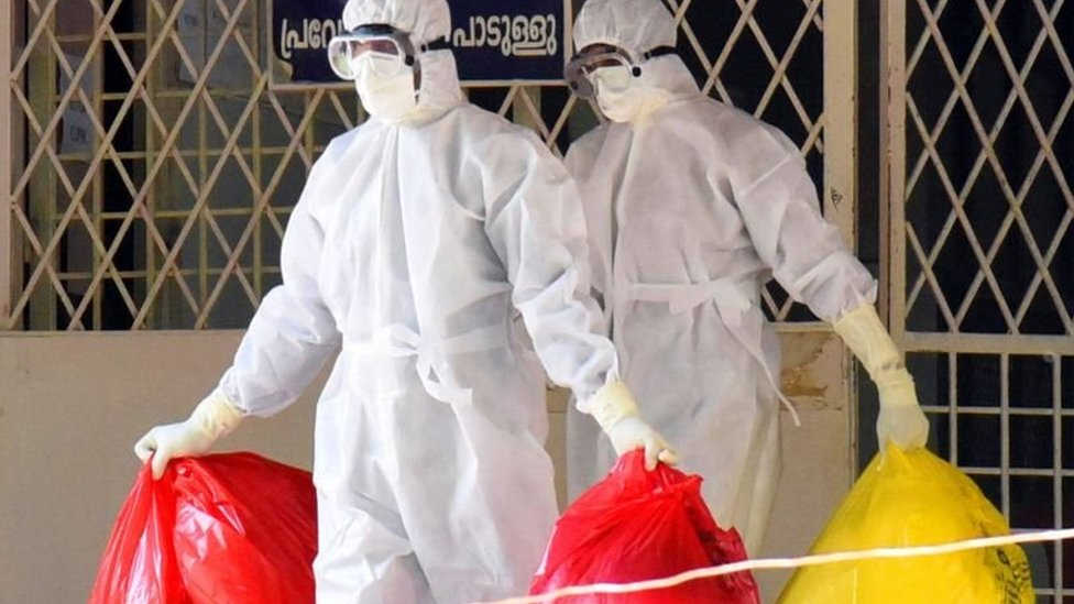 انڈیا میں نیپا وائرس