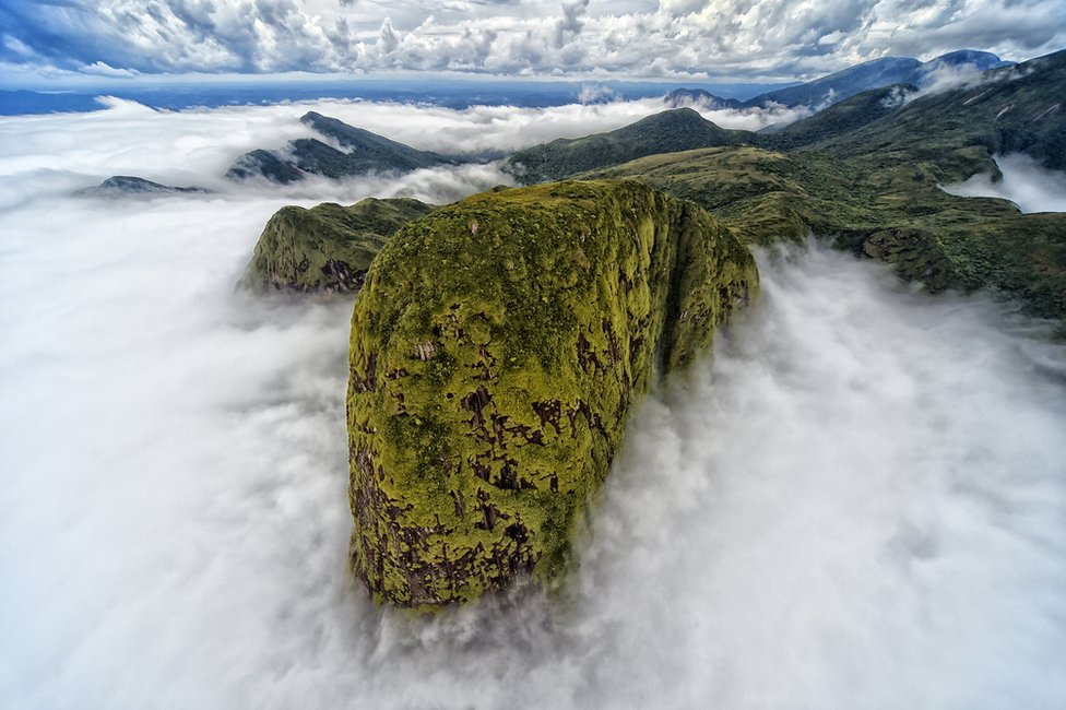 A green-covered top of a mountain emerges from the clouds
